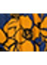518233_041_1_S_SAIA-MIDI-EST-VENTO
