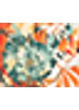 508647_031_1_M_BLUSA-EST-ATLANTICA