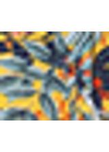 512558_031_1_S_SHORT-EST-OLIVEIRAS