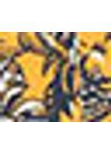 514757_031_1_S_VESTICO-C--CINTO-EST-SUNSET