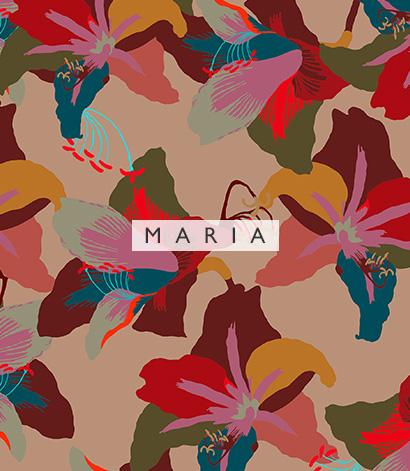 Banner 05 Carrossel 05 Maria