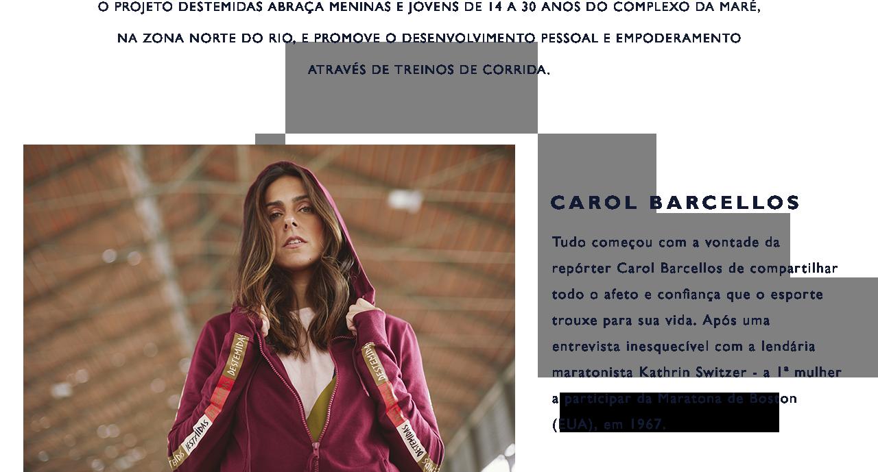 Carol Barcellos Banner Desktop